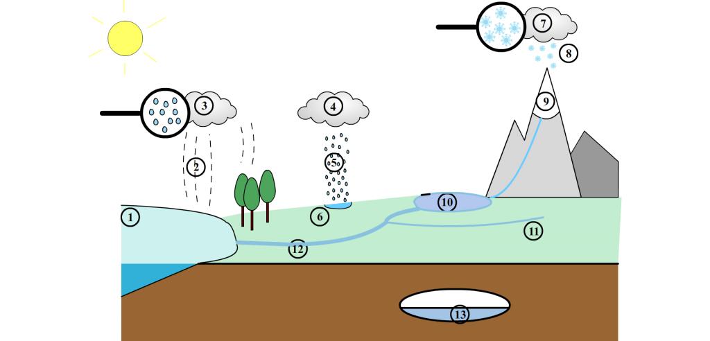 Schema Le cycle de l-eau
