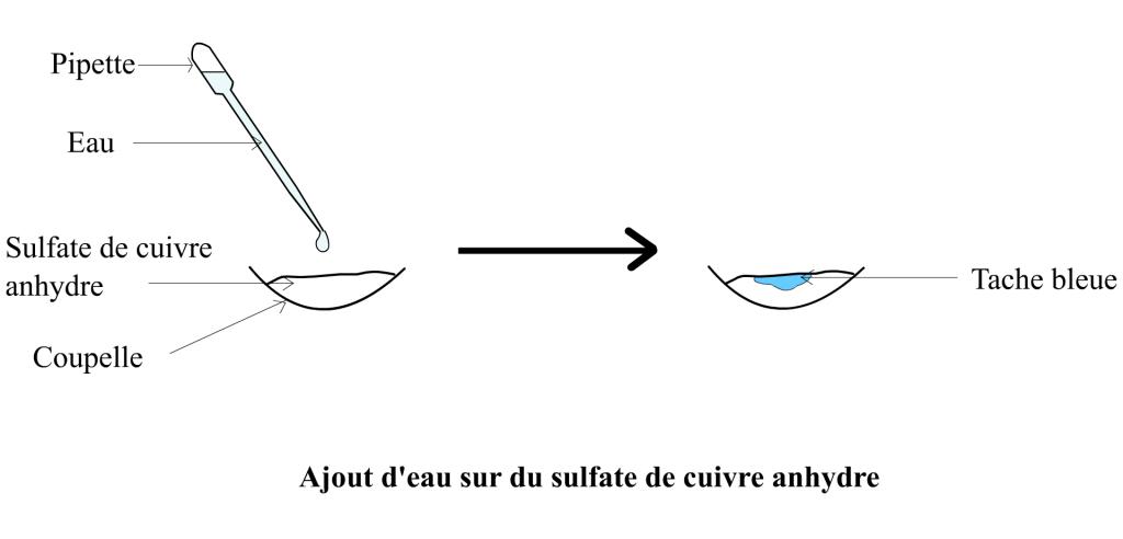 Ajout d'eau sur du sulfate de cuivre anhydre