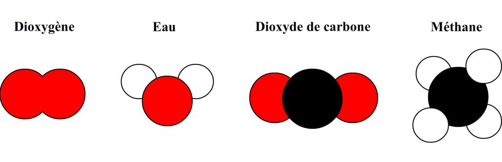 exemples de modèles moléculaires