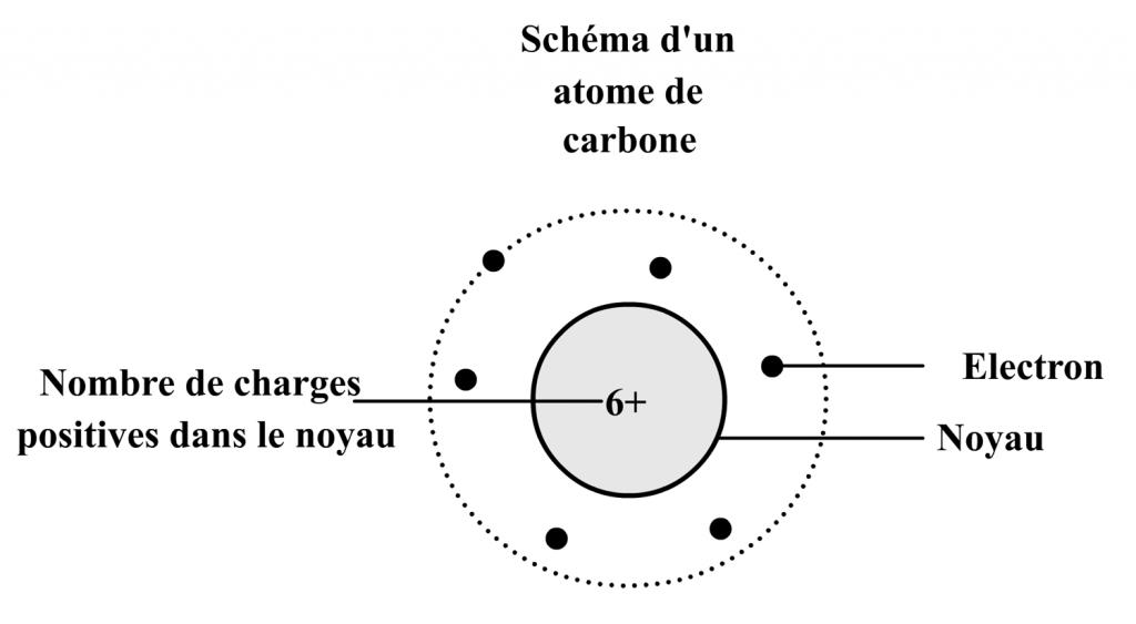 Les constituants d'un atome : exemple de l'atome de carbone