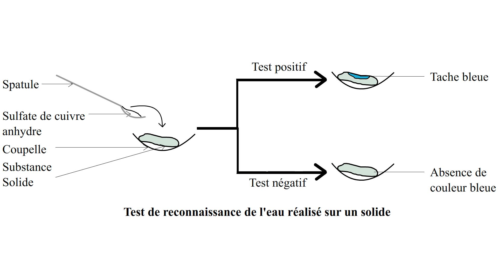 Le Test De Reconnaissance De L Eau