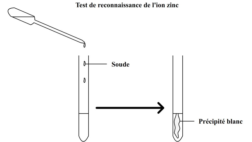 Test de reconnaissance de l'ion zinc