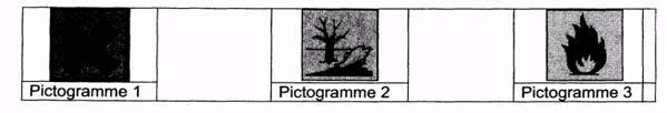 brevet-2011-technologique-02-pictogrammes